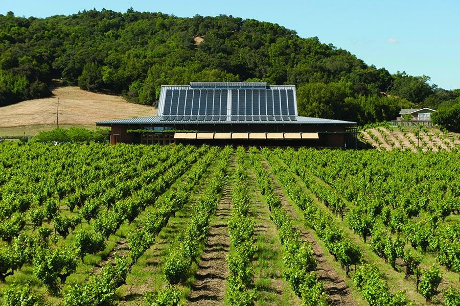 winery solar